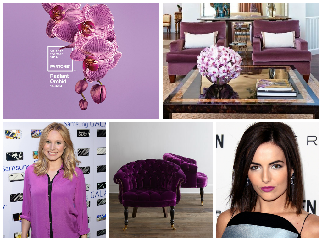 orchid collage Radiant Orchid Pantone Color Of The Year 2014