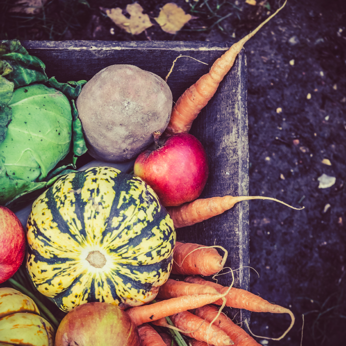 iStock 000029919498Small Cooking With Winter Vegetables