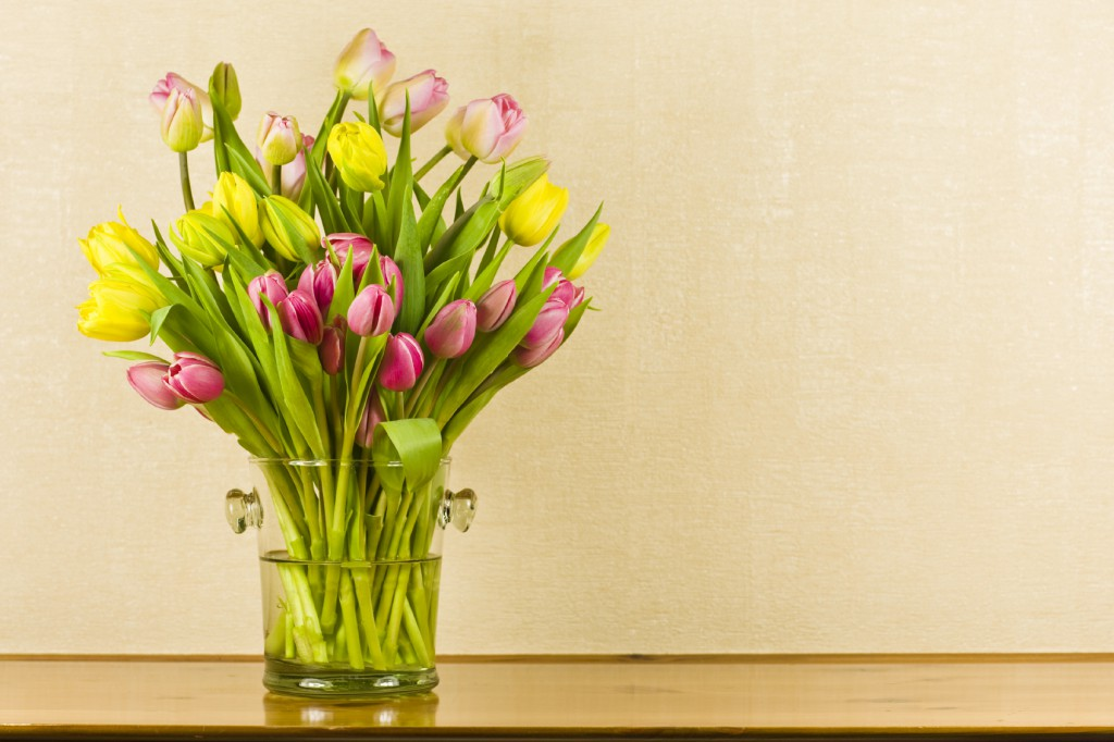 TipToe Through the Tulips iStock 000005917590Medium 1 1024x682 Spring Has Arrived With Daylight Savings And So Has Spring Decor