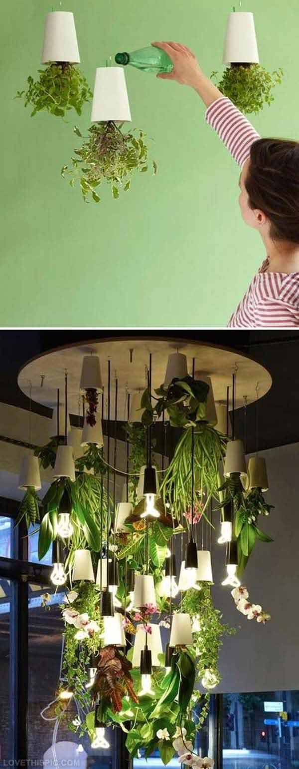 woohome Brilliant New Ways For Displaying Plants