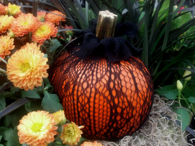 Black lace pumpkin and mum Fall Crafts & DIY Projects that Wont Take All Day