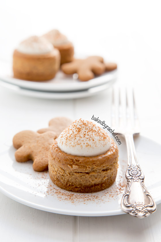 gingerbreadcheesecakes1 bakedbyrachel 11 Holiday Desserts That Will Wow Your Family and Friends